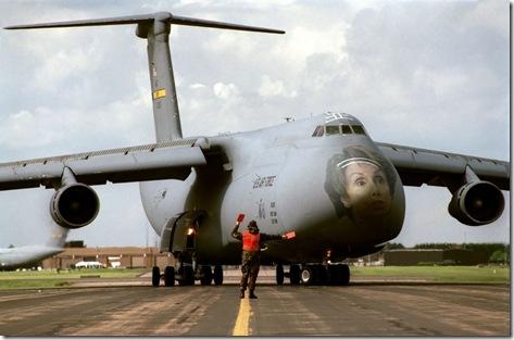 Air Force Bird Strike Reduction